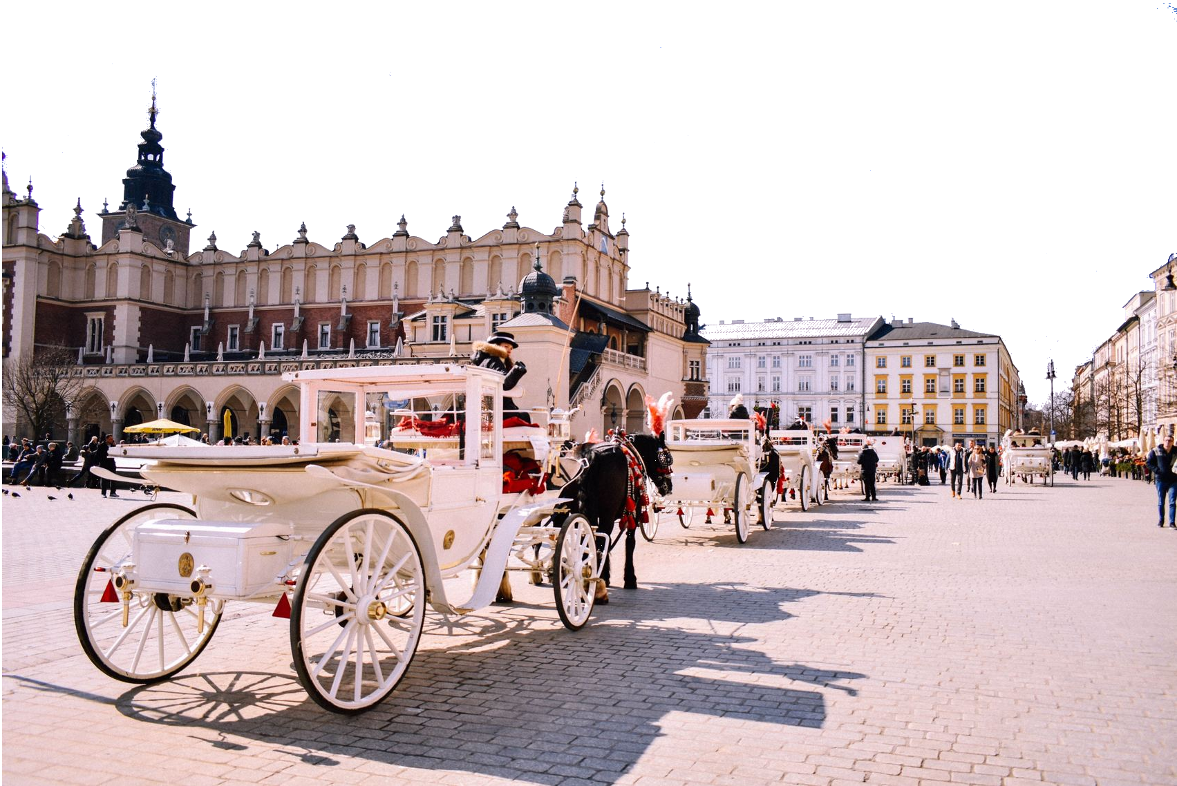 Krakow square with horses